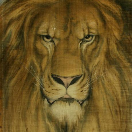 25434 African Lion Wildlife Painting.