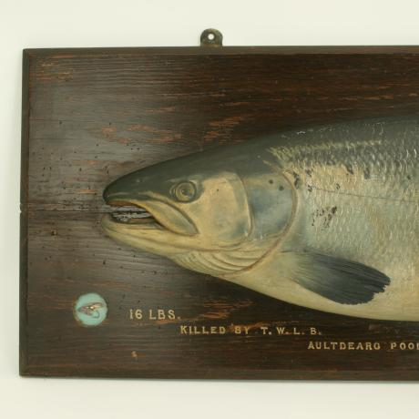 25794 Carved Salmon Trophy Fish Model, Spey....